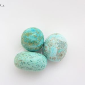 Chrysocolle qualité AA